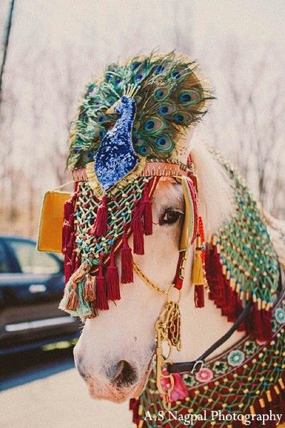Baraat in Upstate, NY Indian Wedding by A.S Nagpal Photography