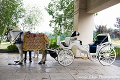A horse and carriage baraat for an Indian Fusion wedding.