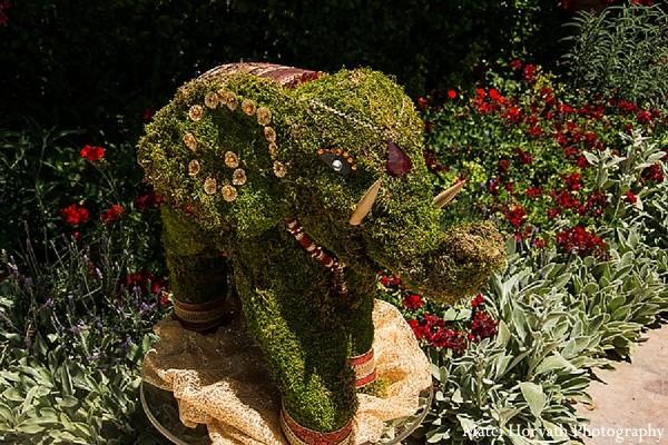 elephant,elephant display,ceremony details,floral and decor,elephant decor,indian wedding decorations,indian wedding decor,indian wedding decoration,indian wedding decorators,indian wedding decorator,indian wedding ideas,indian wedding decoration ideas