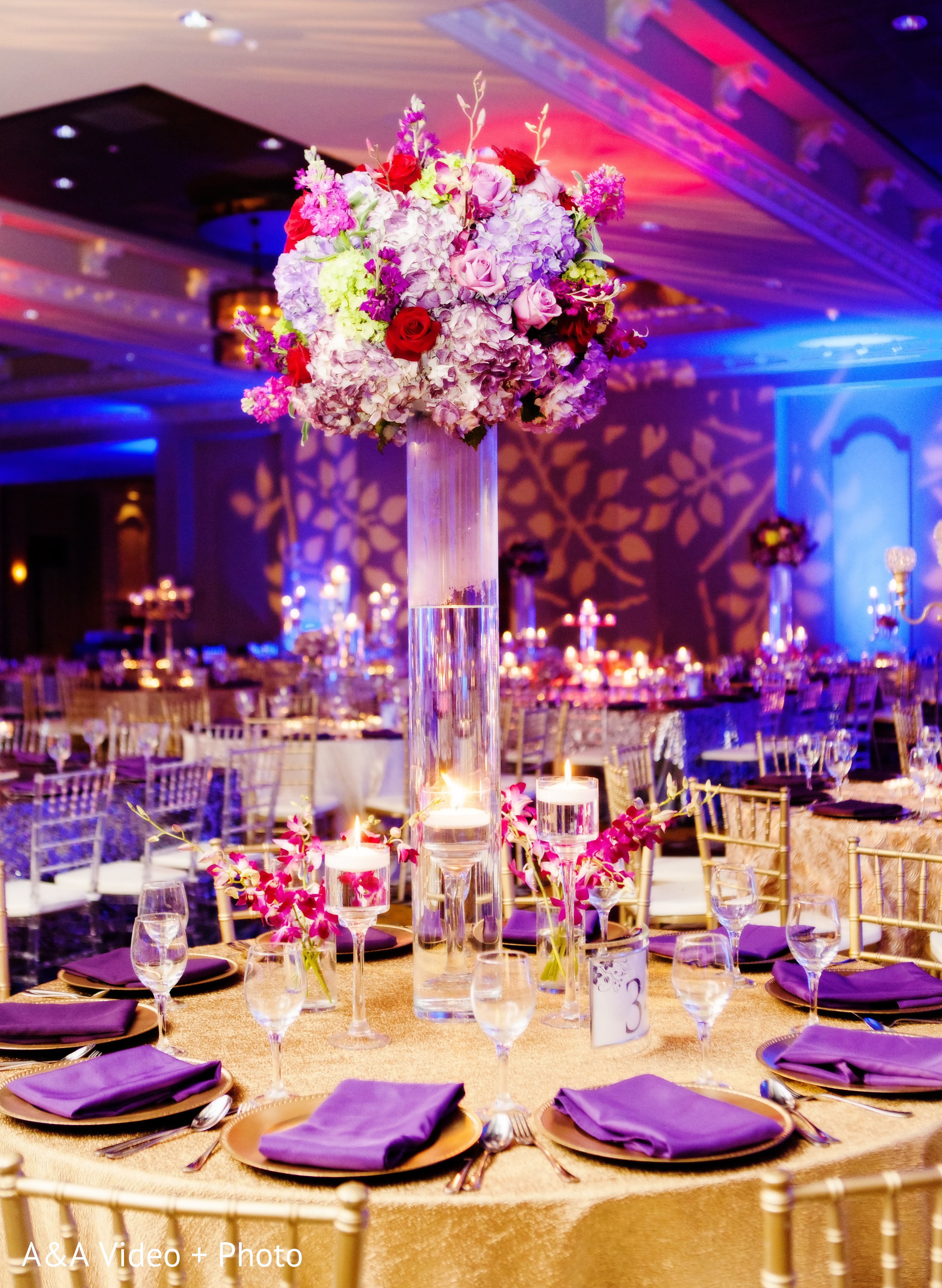 Reception In Houston TX Indian Wedding By AampA Video Photo