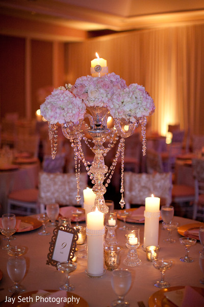 Reception in Mahwah, NJ Indian Wedding by Jay Seth Photography