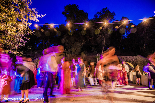 Reception in Napa, CA Indian Fusion Wedding by Elle Jae Wedding Photography