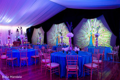 This amazing peacock-themed reception is a must-see!