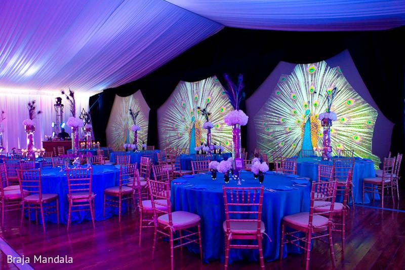 Peacock,peacock Inspired,peacock Theme,peacock Themed,peacock Reception, Peacock