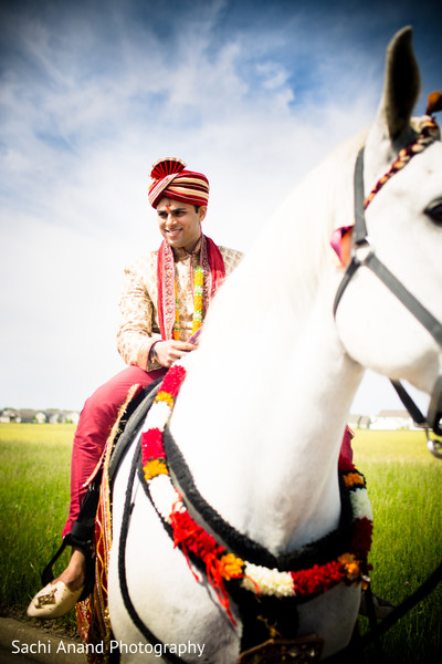 baraat,groom baraat,indian groom,indian groom baraat,baraat procession,baraat ceremony Indian bridegroom,horse,horse for baraat,baraat horse,horse for indian groom,horse for indian wedding