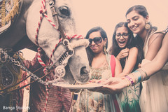indian pre-wedding venue,indian pre-wedding celebrations,indian wedding ceremony programs,indian pre-wedding events,pre-wedding indian events,indian wedding baraat,indian groom baraat,indian groom,traditional indian wedding,indian wedding traditions,indian wedding customs,indian weddings
