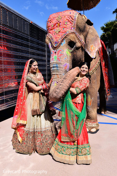 Baraat in Marina del Rey, CA Indian Wedding by Greycard Photography
