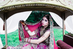 indian weddings,indian palanquin,henna for indian bride,palanquin for indian wedding,indian wedding transportation,transportation for indian wedding,portraits of indian wedding,indian bride,indian bridal fashions,indian bride photography,indian wedding photo