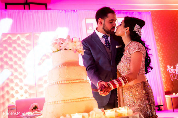 Reception in Long Island, NY Indian Wedding by PhotosMadeEz