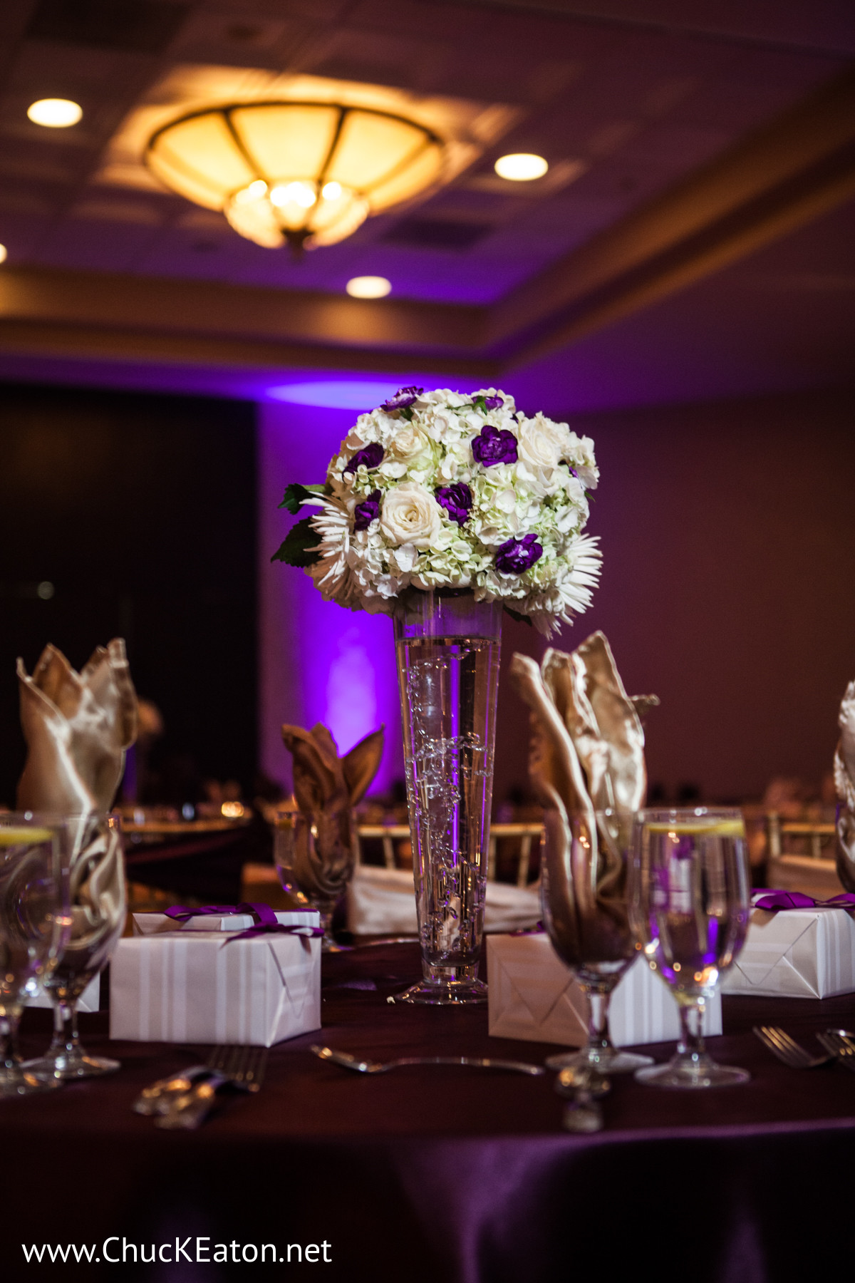 Reception Decor In Charlotte NC Indian Wedding By Chuck Eaton