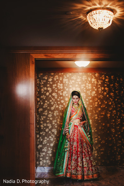 Bridal Portrait in Salt Lake City, UT Indian Wedding by Nadia D. Photography
