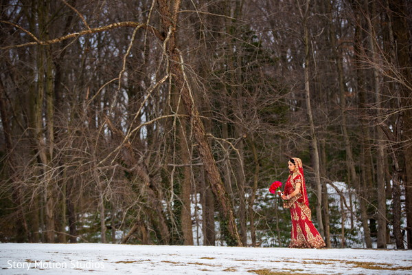 Portraits in Chantilly, VA Indian Wedding by Story Motion Studios