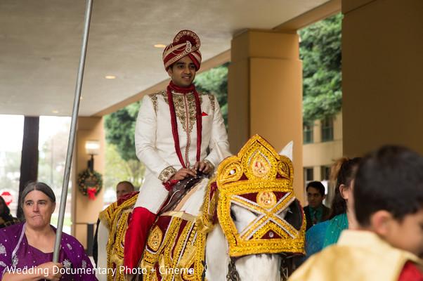 indian wedding baraat,horse