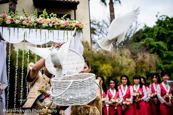 Flying Doves in San Diego, CA  Sri Lankan - Tibetan Wedding by Matei Horvath Photography
