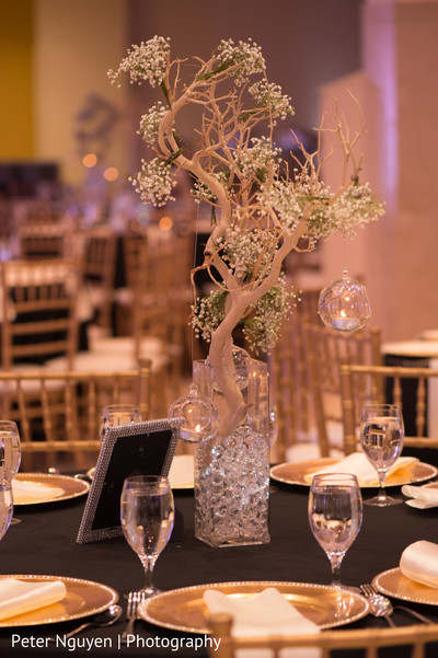 Reception Decor in Atlanta, GA Indian Wedding by Peter Nguyen Photography