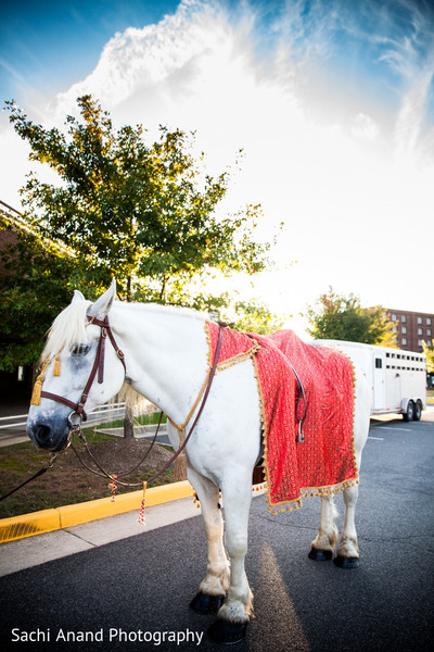 Baraat in Springfield, VA Indian Wedding by Sachi Anand Photography