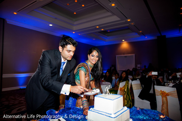 Reception in Atlanta, GA South Indian Wedding by Alternative Life Photography & Design