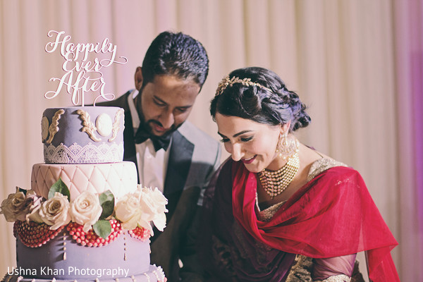 Reception in Scottsdale, AZ Sikh Wedding by Ushna Khan Photography