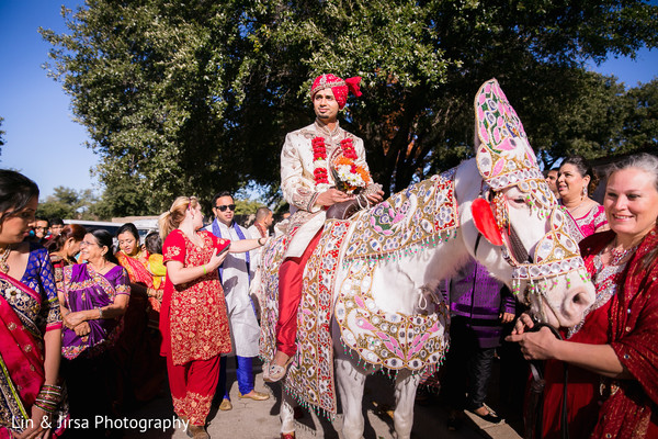 horse,indian wedding baraat