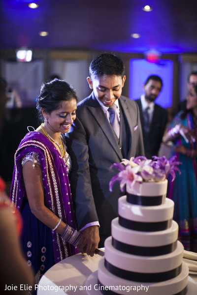 Reception in Blue Bell, PA Indian Wedding by Joie Elie Photography and Cinematography