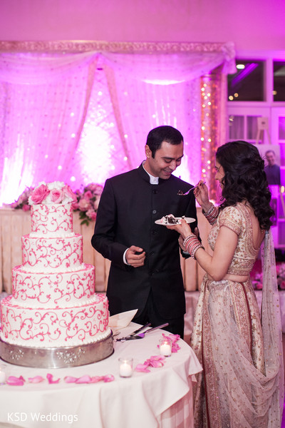 Reception in Poughkeepsie, NY Indian Wedding by KSD Weddings