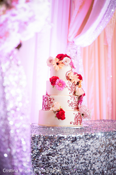 Reception in Dallas, TX Indian Wedding by Cristina Wisner Photographer