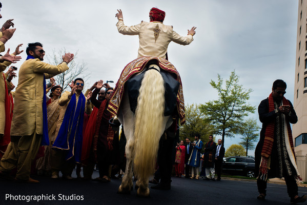 horse,transportation,baraat