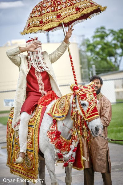 indian wedding baraat,horse