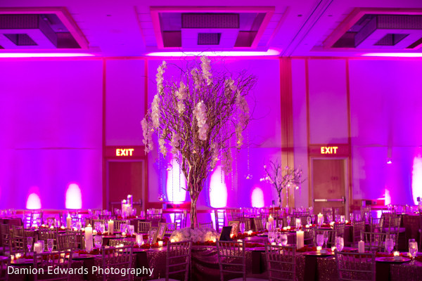 Reception in Princeton, NJ Indian Wedding by Damion Edwards Photography