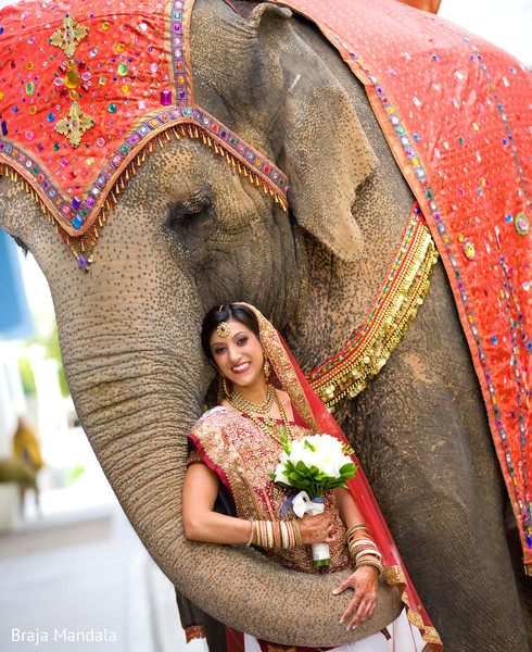 Portraits in 6 Expert Tips for Great Wedding Photographs by Braja Mandala Photography