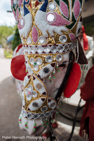 Baraat in Dallas, TX Indian Wedding by Matei Horvath Photography
