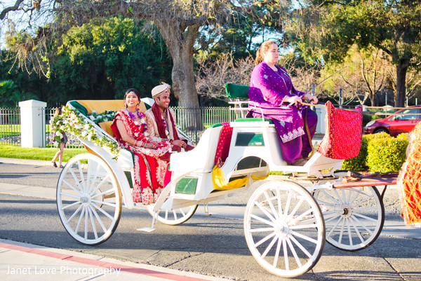 transportation,horse and carriage