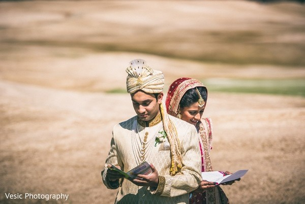 First Look in Greensboro, NC Indian Wedding by Vesic Photography