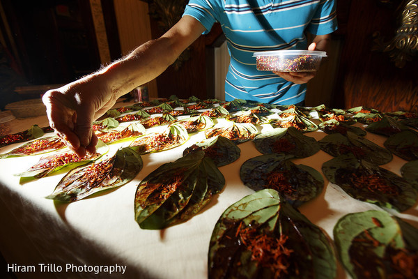 Sangeet Appetizers in Richmond, TX South Asian Wedding by Hiram Trillo Art Photography
