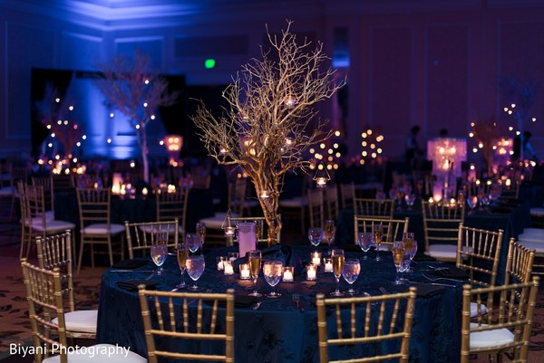 Reception Decor in Houston, TX Indian Wedding by Biyani Photography