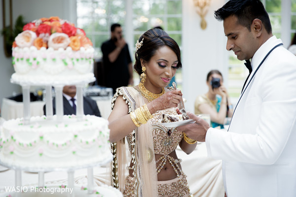 Reception in Joliet, IL Indian Wedding by WASIO Photography