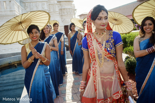 Bridal Party Portrait in Chicago, IL Indian Wedding by Mateos Wedding