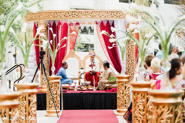 Charlotte Nc Indian Wedding By All Bliss Photography Post 6774