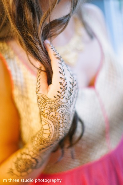 Mehndi Party in Milwaukee, WI Indian Fusion Wedding by m three studio photography