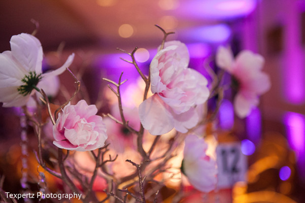 Reception decor in Dallas, TX Indian Fusion Wedding by Texpertz Photography