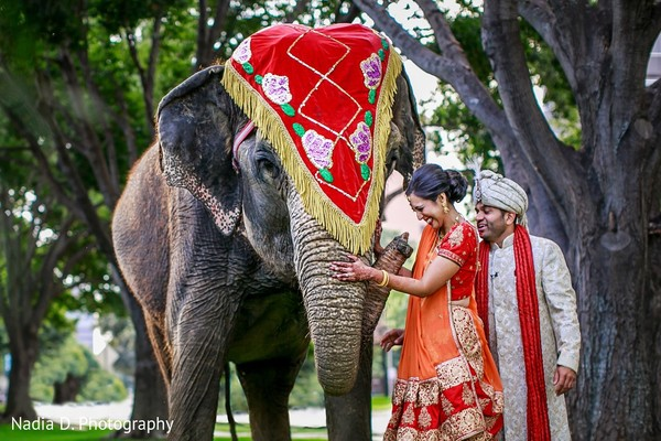 First Look in Irving, TX Indian Wedding by Nadia D. Photography