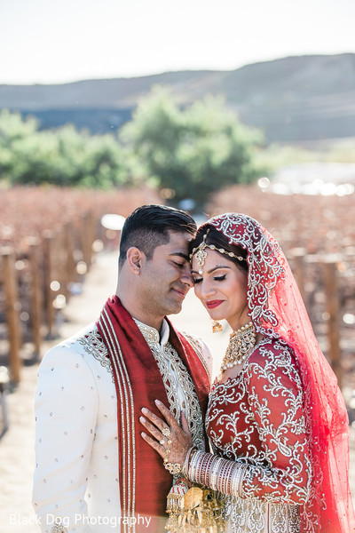 First Look in Temecula, CA Indian Wedding by Black Dog Photography