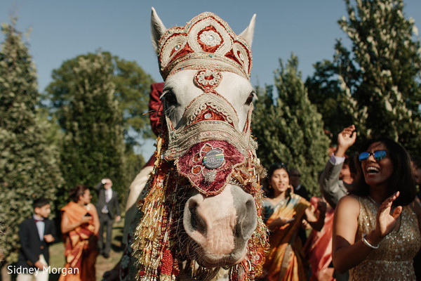 Baraat in Staten Island, NY Indian Fusion Wedding by Sidney Morgan Photography