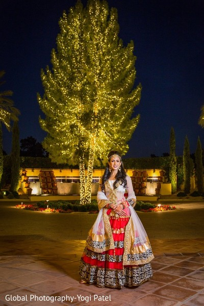 Reception Portrait in Scottsdale, AZ Indian Wedding by Global Photography