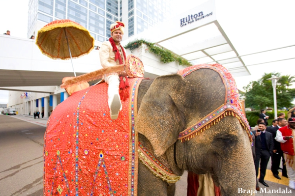 Indian wedding traditional baraat celebration elephant in San Diego, California Indian Wedding by Braja Mandala Wedding Photography