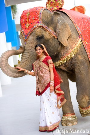 red traditional elephant - photo #14