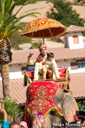 Indian-wedding-baraat-elephant-groom