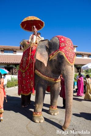 Indian-wedding-baraat-elephant-outdoor-celebration
