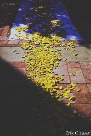 Indian wedding ceremony floral petals in Westlake, Texas Indian Wedding by Erik Clausen Photography