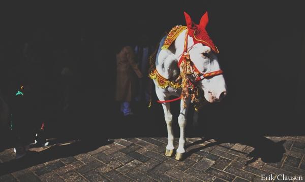 Indian wedding horse white celebration in Westlake, Texas Indian Wedding by Erik Clausen Photography